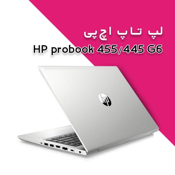 probook 455 445 G6